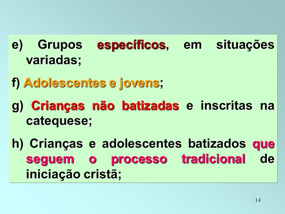 14 e) Grupos específicos, em situações variadas; f) Adolescentes e jovens; g) Crianças não batizadas e inscritas na catequese; h) Crianças e adolescen