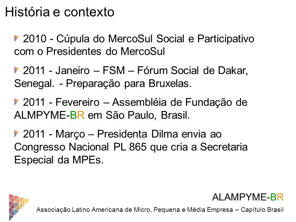 ALAMPYME-BR Associação Latino Americana de Micro, Pequena e Média Empresa – Capítulo Brasil História e contexto 2010 - Cúpula do MercoSul Social e Par