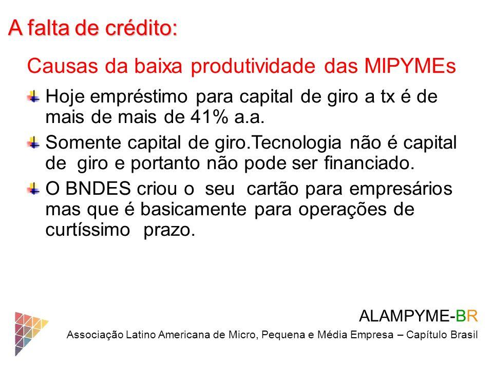 A falta de crédito: ALAMPYME-BR Associação Latino Americana de Micro, Pequena e Média Empresa – Capítulo Brasil Causas da baixa produtividade das MIPY
