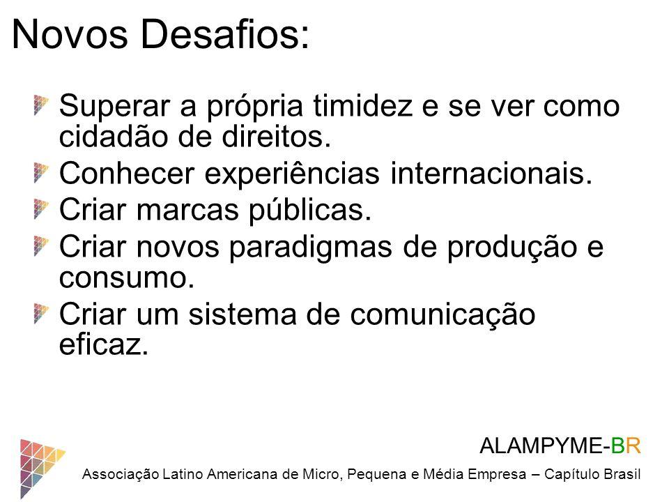 ALAMPYME-BR Associação Latino Americana de Micro, Pequena e Média Empresa – Capítulo Brasil Novos Desafios: Superar a própria timidez e se ver como ci
