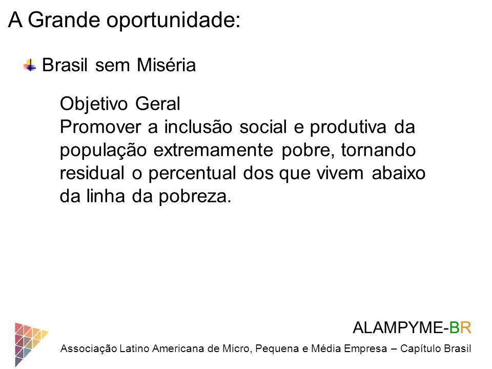 ALAMPYME-BR Associação Latino Americana de Micro, Pequena e Média Empresa – Capítulo Brasil A Grande oportunidade: Brasil sem Miséria Objetivo Geral P