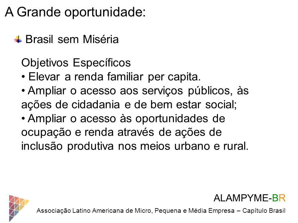 ALAMPYME-BR Associação Latino Americana de Micro, Pequena e Média Empresa – Capítulo Brasil A Grande oportunidade: Brasil sem Miséria Objetivos Especí