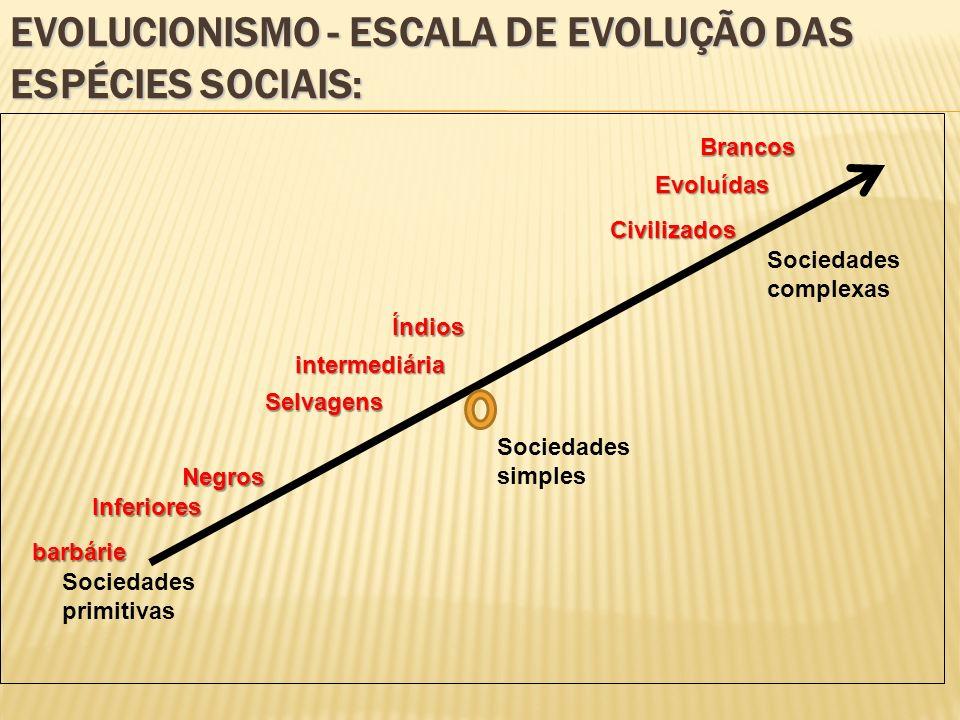 EVOLUCIONISMO - ESCALA DE EVOLUÇÃO DAS ESPÉCIES SOCIAIS: Sociedades primitivas Sociedades simples Sociedades complexas intermediária Negros Evoluídas