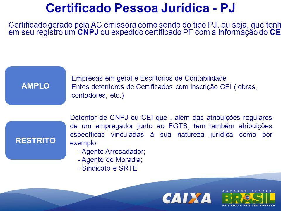 AMPLO RESTRITO Empresas em geral e Escritórios de Contabilidade Entes detentores de Certificados com inscrição CEI ( obras, contadores, etc.) Detentor