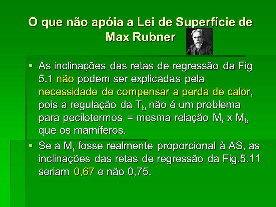 O que não apóia a Lei de Superfície de Max Rubner As inclinações das retas de regressão da Fig 5.1 não podem ser explicadas pela necessidade de compen