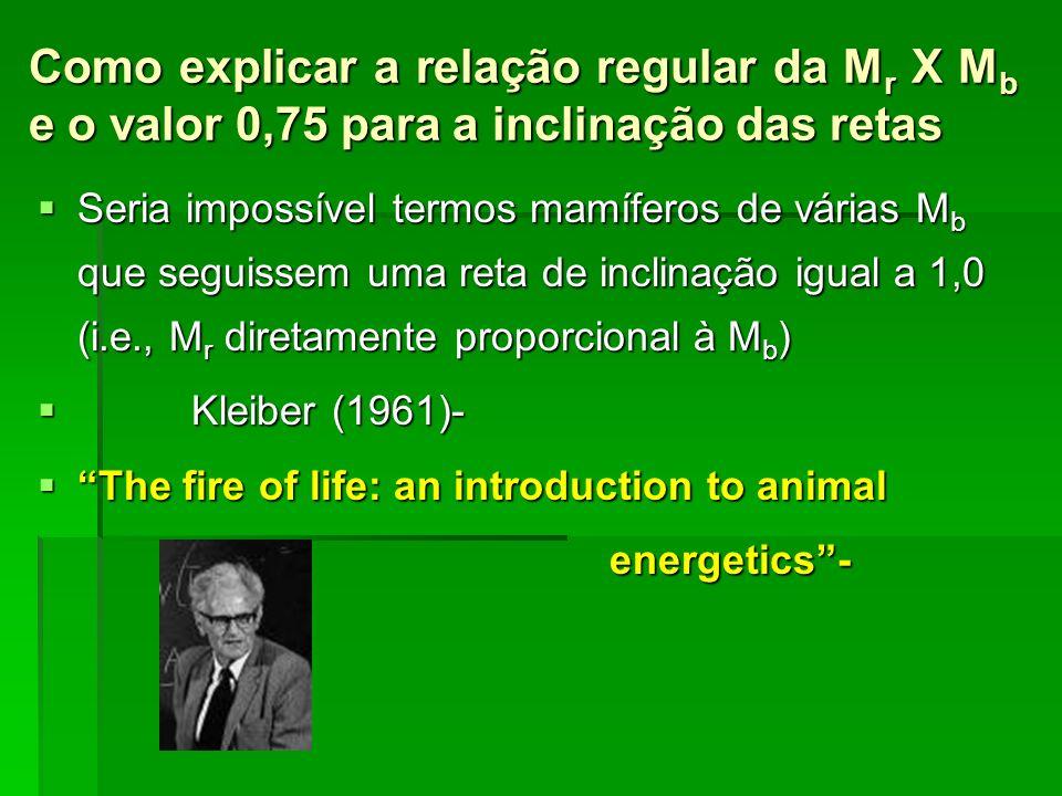 Como explicar a relação regular da M r X M b e o valor 0,75 para a inclinação das retas Seria impossível termos mamíferos de várias M b que seguissem