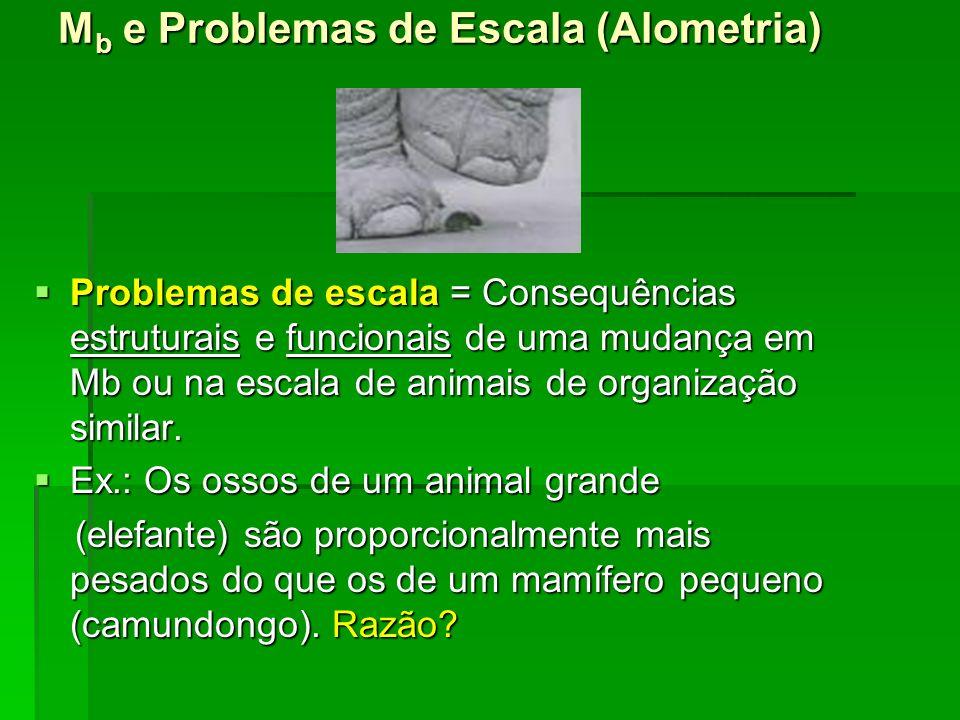 M b e Problemas de Escala (Alometria) Problemas de escala = Consequências estruturais e funcionais de uma mudança em Mb ou na escala de animais de org