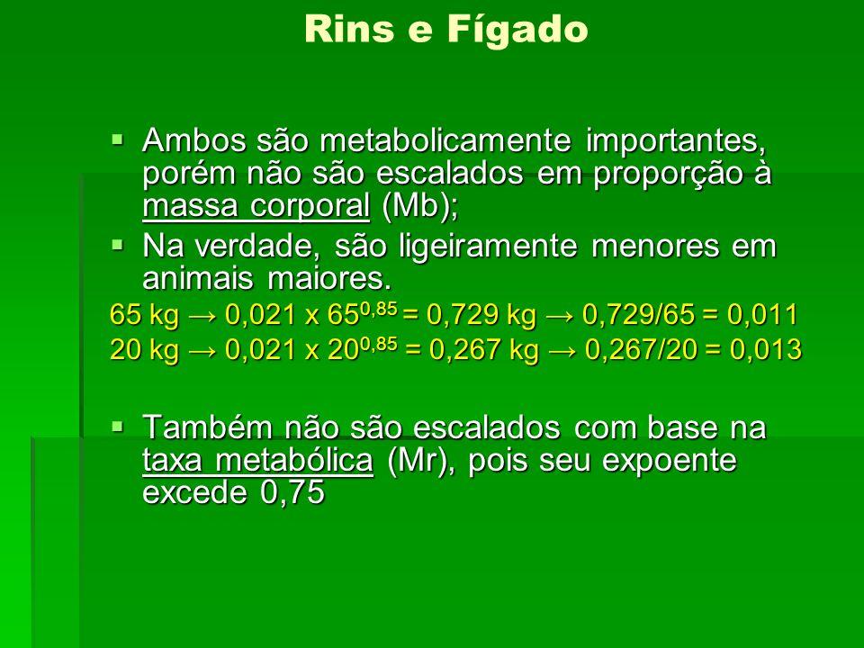 Rins e Fígado Ambos são metabolicamente importantes, porém não são escalados em proporção à massa corporal (Mb); Ambos são metabolicamente importantes