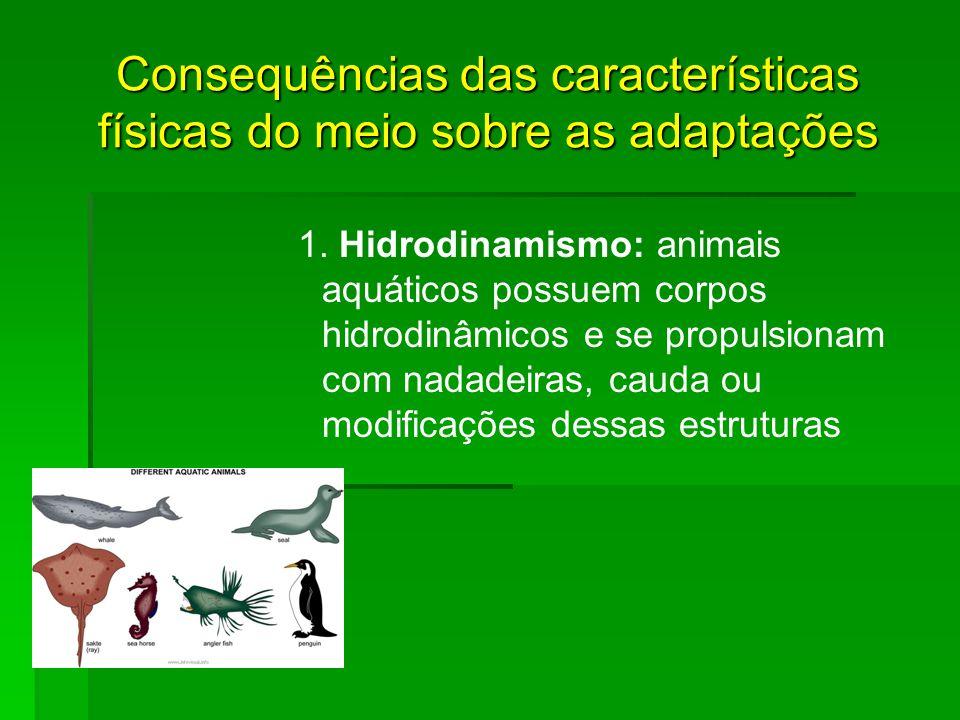Consequências das características físicas do meio sobre as adaptações 1. Hidrodinamismo: animais aquáticos possuem corpos hidrodinâmicos e se propulsi