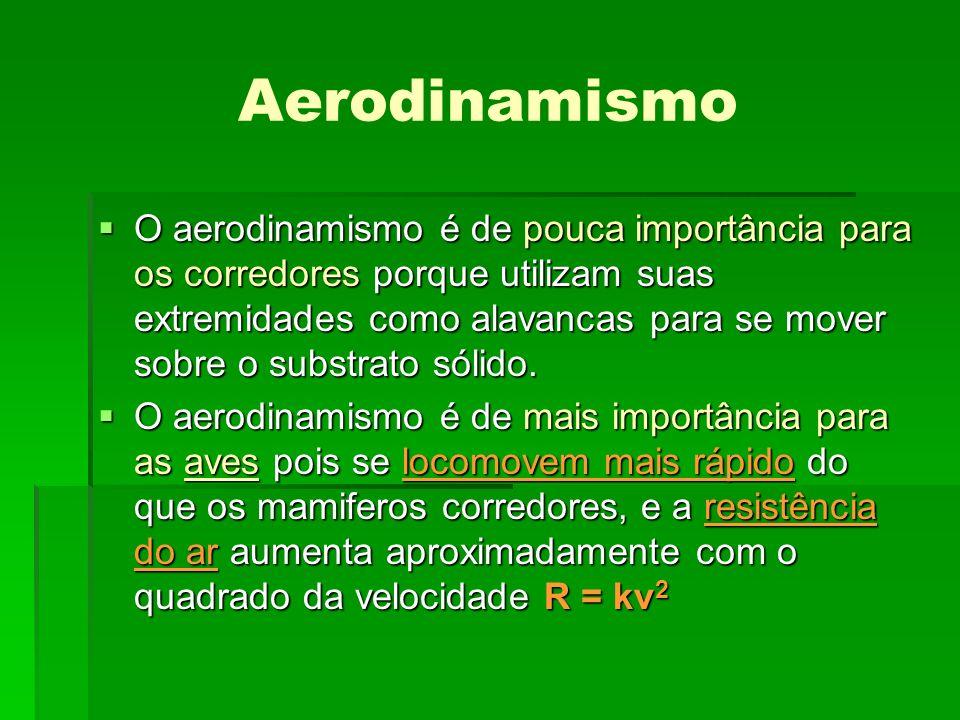 Aerodinamismo O aerodinamismo é de pouca importância para os corredores porque utilizam suas extremidades como alavancas para se mover sobre o substra