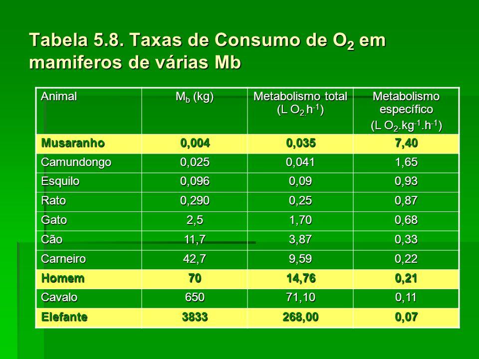 Tabela 5.8. Taxas de Consumo de O 2 em mamiferos de várias Mb Animal M b (kg) Metabolismo total (L O 2. h -1 ) Metabolismo específico (L O 2.kg -1.h -