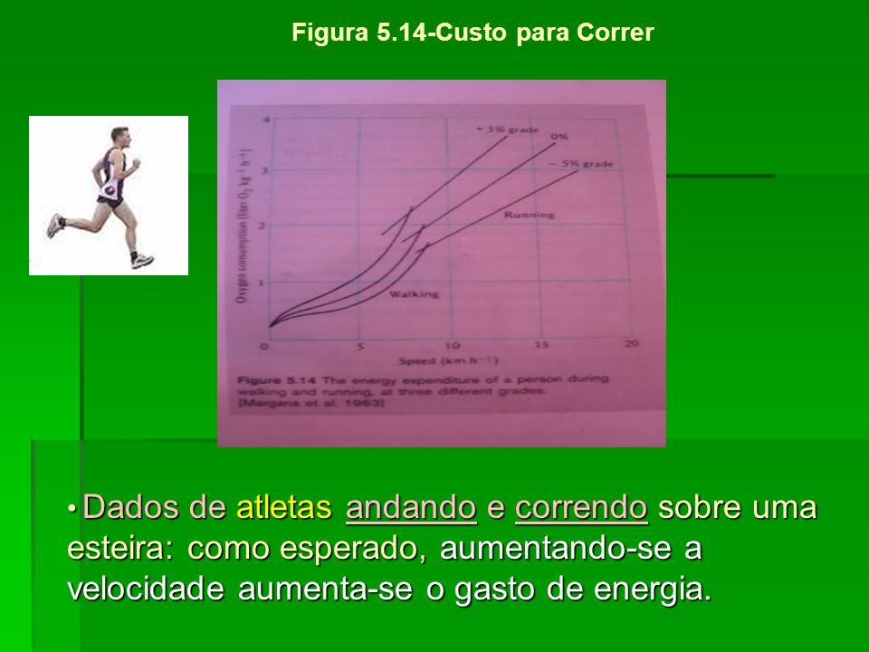 Dados de atletas andando e correndo sobre uma esteira: como esperado, aumentando-se a velocidade aumenta-se o gasto de energia. Dados de atletas andan