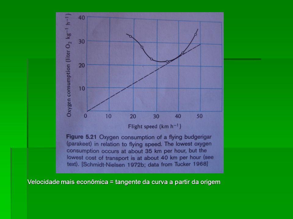 Velocidade mais econômica = tangente da curva a partir da origem