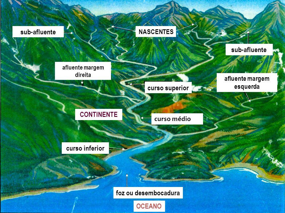 foz ou desembocadura NASCENTES CONTINENTE afluente margem direita curso inferior OCEANO curso médio sub-afluente afluente margem esquerda curso superi