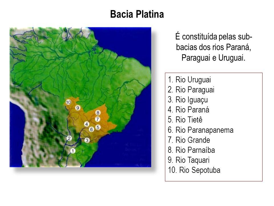 Bacia Platina É constituída pelas sub- bacias dos rios Paraná, Paraguai e Uruguai. 1. Rio Uruguai 2. Rio Paraguai 3. Rio Iguaçu 4. Rio Paraná 5. Rio T
