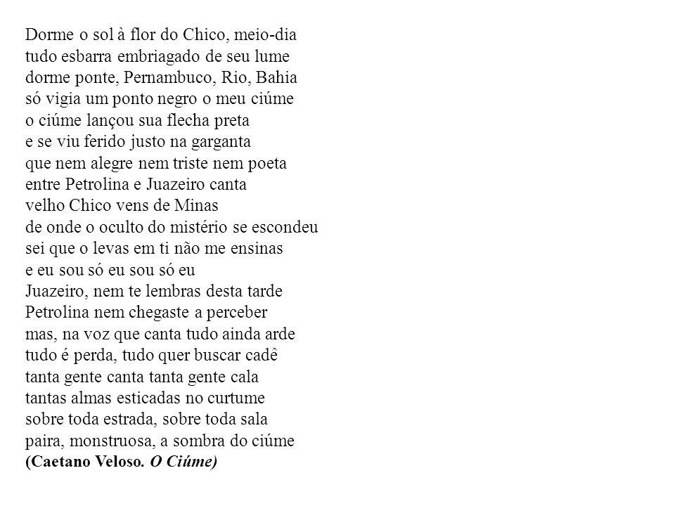 Dorme o sol à flor do Chico, meio-dia tudo esbarra embriagado de seu lume dorme ponte, Pernambuco, Rio, Bahia só vigia um ponto negro o meu ciúme o ci