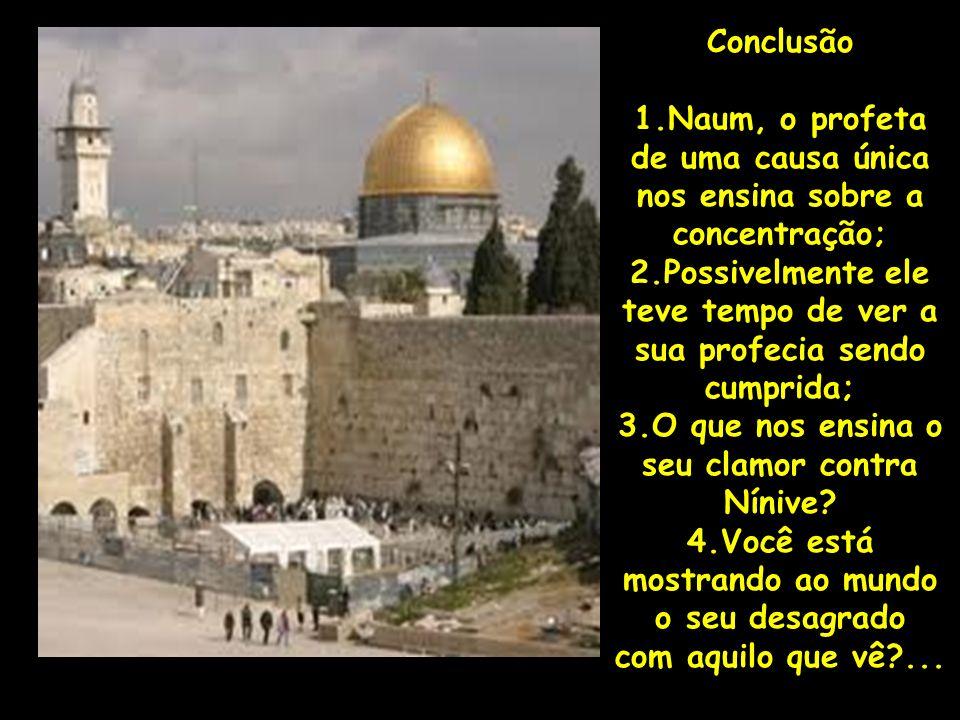 Conclusão 1.Naum, o profeta de uma causa única nos ensina sobre a concentração; 2.Possivelmente ele teve tempo de ver a sua profecia sendo cumprida; 3