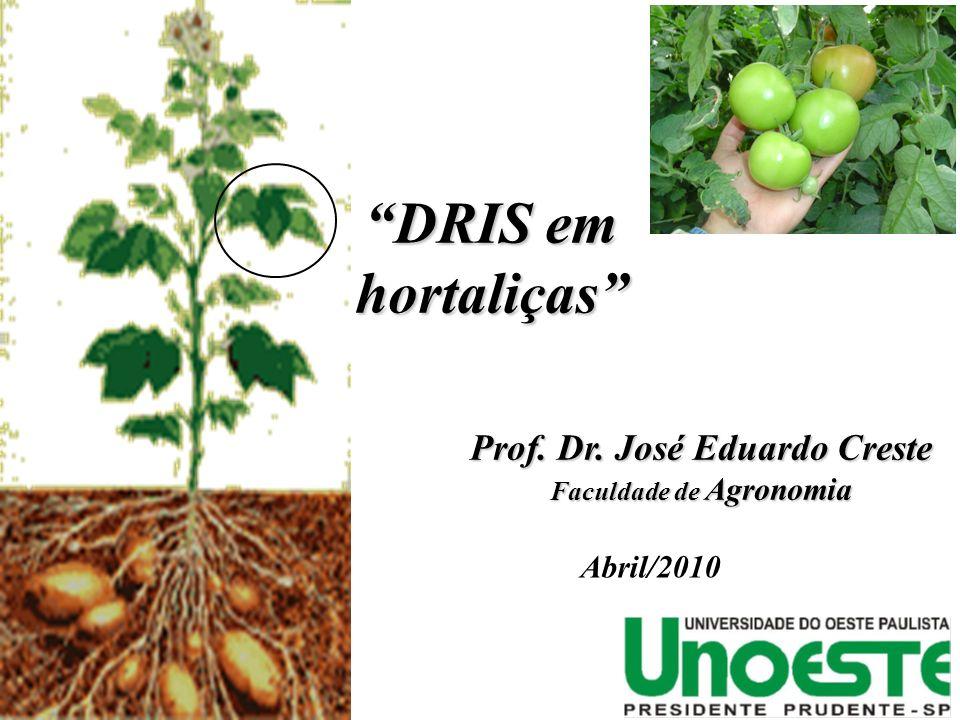 DRIS em hortaliças DRIS em hortaliças Prof.Dr. José Eduardo Creste Prof.