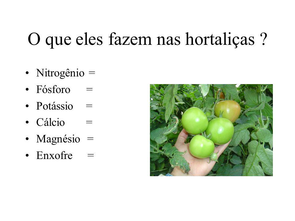 O que eles fazem nas hortaliças ? Nitrogênio = Fósforo = Potássio = Cálcio = Magnésio = Enxofre =