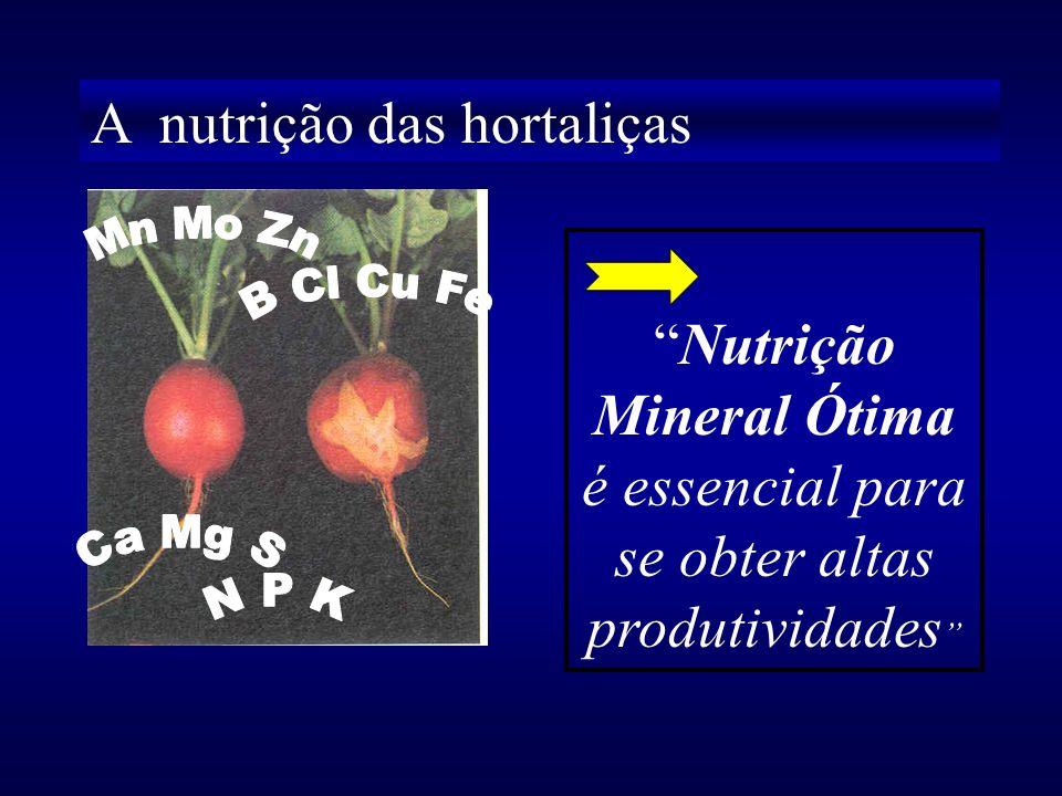 A importância das relações tem seu alicerce no conceito de Equilíbrio Nutricional, como principal característica do diagnóstico nutricional Lagatu & M