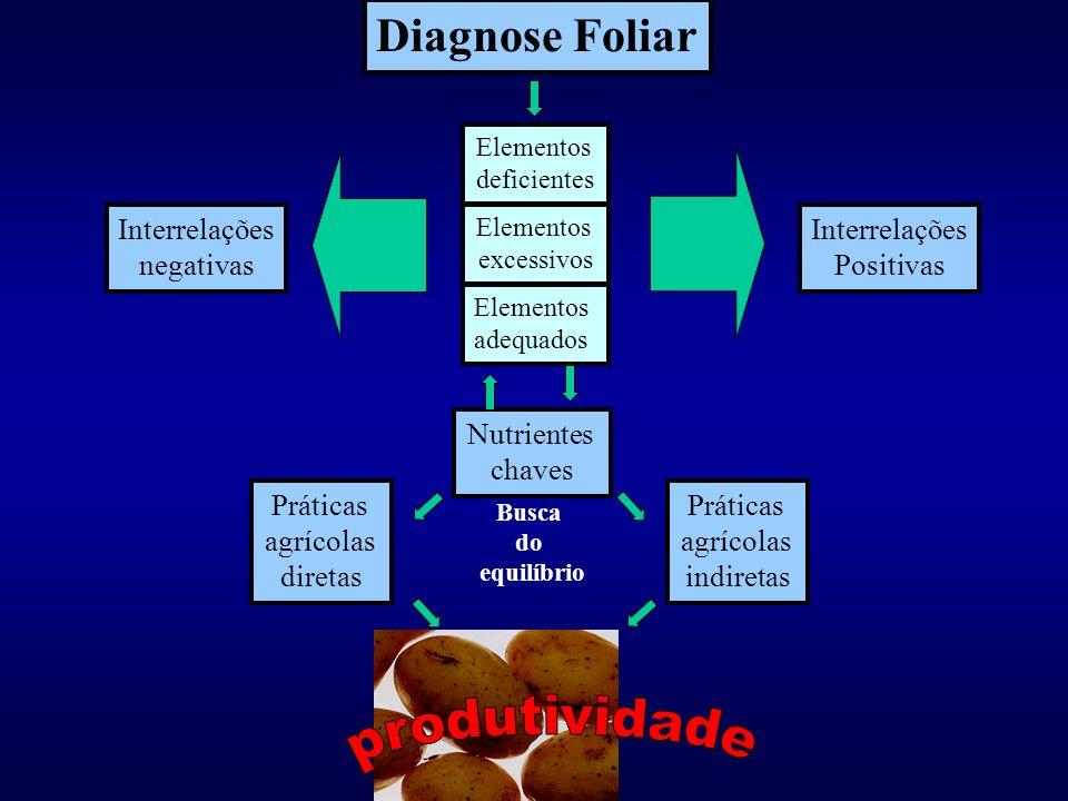 Diagnóstico Nutricional Programa computacional de cálculo Composição química Variedade Porta enxerto Produtividade Banco de dados Análise matemática d