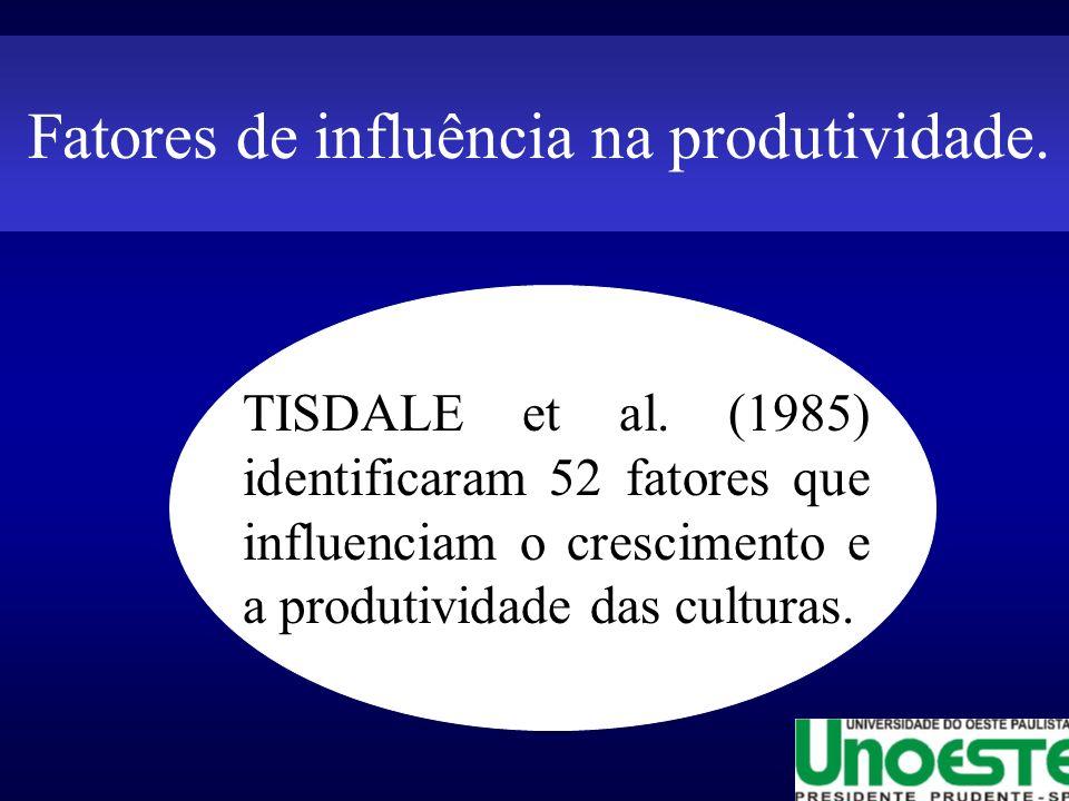 Fatores de influência na produtividade.TISDALE et al.