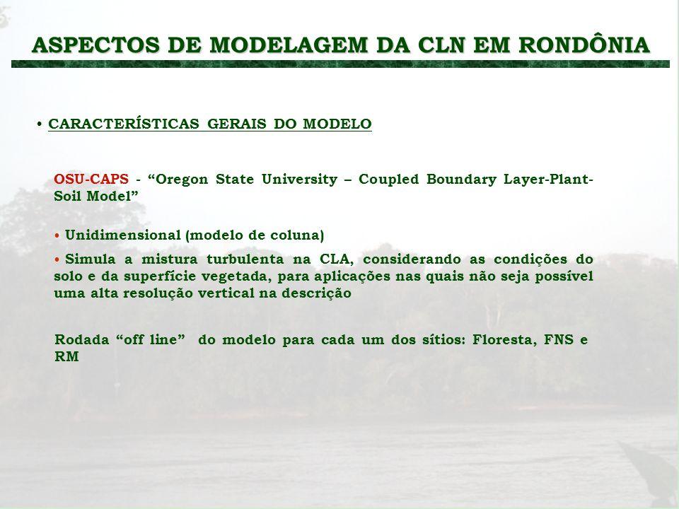 ASPECTOS DE MODELAGEM DA CLN EM RONDÔNIA CARACTERÍSTICAS GERAIS DO MODELO Rodada off line do modelo para cada um dos sítios: Floresta, FNS e RM OSU-CA