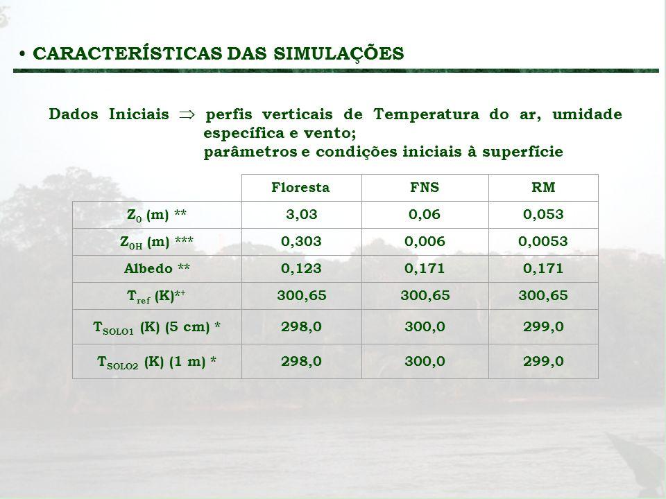 CARACTERÍSTICAS DAS SIMULAÇÕES Dados Iniciais perfis verticais de Temperatura do ar, umidade específica e vento; parâmetros e condições iniciais à sup