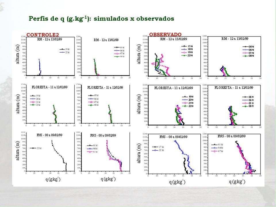 CONTROLE1 CONTROLE2 OBSERVADO Perfis de q (g.kg -1 ): simulados x observados