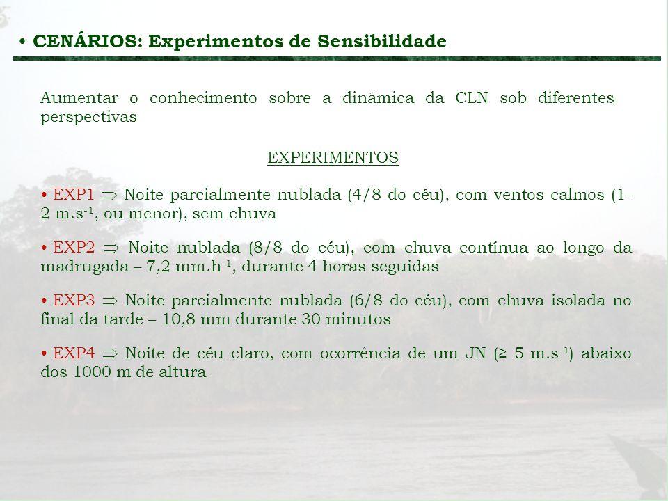 CENÁRIOS: Experimentos de Sensibilidade Aumentar o conhecimento sobre a dinâmica da CLN sob diferentes perspectivas EXP1 Noite parcialmente nublada (4