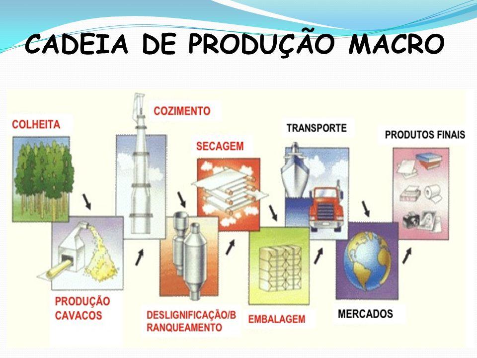 CADEIA DE PRODUÇÃO MACRO