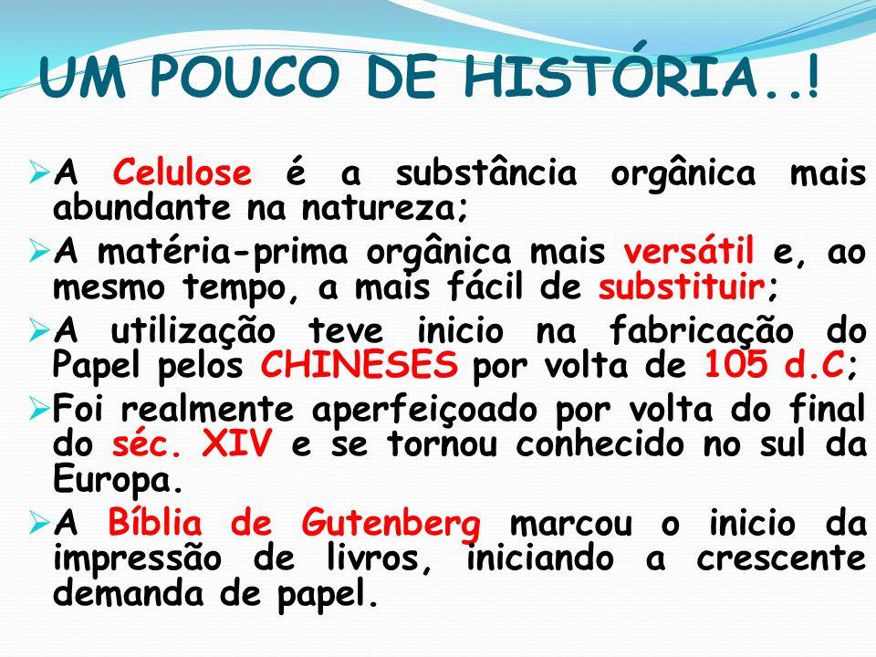 UM POUCO DE HISTÓRIA..! A Celulose é a substância orgânica mais abundante na natureza; A matéria-prima orgânica mais versátil e, ao mesmo tempo, a mai