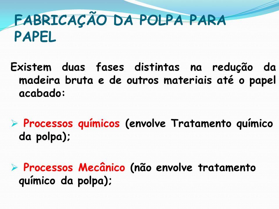 ENTENDENDO O PROCESSO INDUSTRIAL DE PAPEL E CELULOSE As Industriais produzem Celulose...