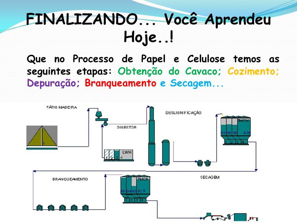 FINALIZANDO... Você Aprendeu Hoje..! Que no Processo de Papel e Celulose temos as seguintes etapas: Obtenção do Cavaco; Cozimento; Depuração; Branquea