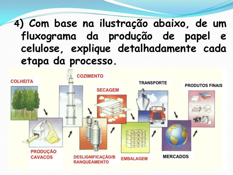 4 ) Com base na ilustração abaixo, de um fluxograma da produção de papel e celulose, explique detalhadamente cada etapa da processo.