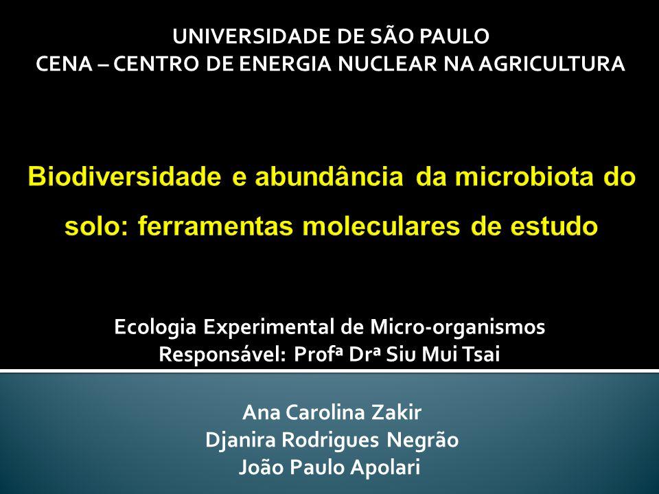 Ana Carolina Zakir Djanira Rodrigues Negrão João Paulo Apolari UNIVERSIDADE DE SÃO PAULO CENA – CENTRO DE ENERGIA NUCLEAR NA AGRICULTURA Ecologia Expe