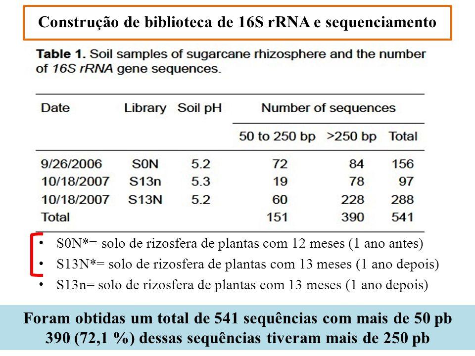 Construção de biblioteca de 16S rRNA e sequenciamento Foram obtidas um total de 541 sequências com mais de 50 pb 390 (72,1 %) dessas sequências tivera