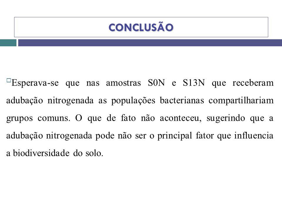 CONCLUSÃO Esperava-se que nas amostras S0N e S13N que receberam adubação nitrogenada as populações bacterianas compartilhariam grupos comuns. O que de