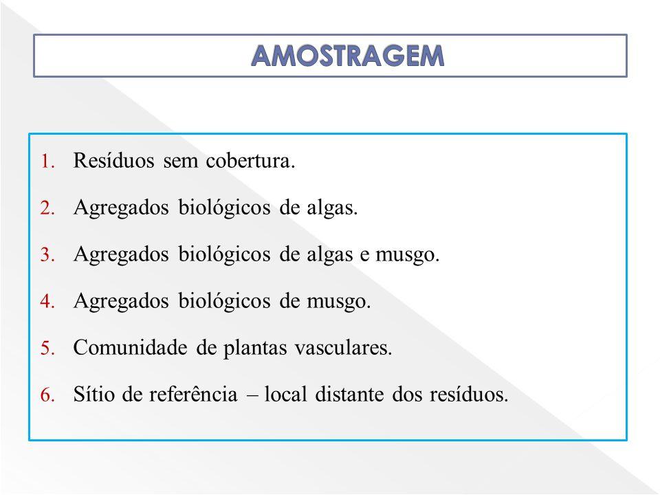 1. Resíduos sem cobertura. 2. Agregados biológicos de algas. 3. Agregados biológicos de algas e musgo. 4. Agregados biológicos de musgo. 5. Comunidade