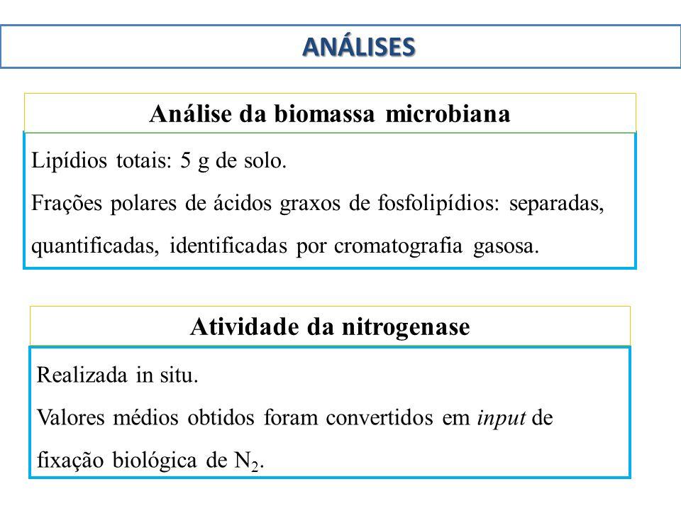 Lipídios totais: 5 g de solo. Frações polares de ácidos graxos de fosfolipídios: separadas, quantificadas, identificadas por cromatografia gasosa. Aná