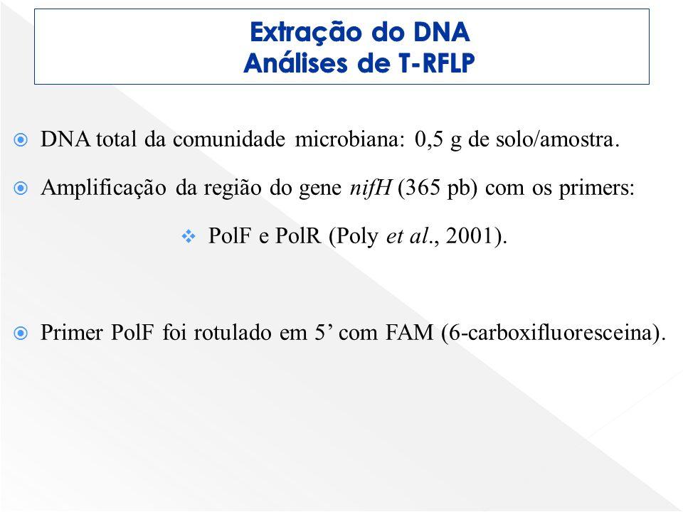 DNA total da comunidade microbiana: 0,5 g de solo/amostra. Amplificação da região do gene nifH (365 pb) com os primers: PolF e PolR (Poly et al., 2001
