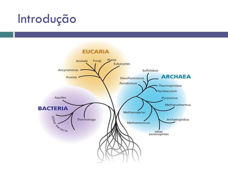 A microbiota do solo apresenta elevada diversidade genética e funcional, que pode ser caracterizada com base em estudos que empregam paralelamente: Dependentes de cultivo Independentes de cultivo
