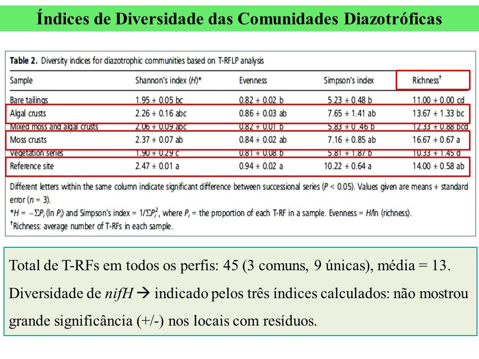 Total de T-RFs em todos os perfis: 45 (3 comuns, 9 únicas), média = 13. Diversidade de nifH indicado pelos três índices calculados: não mostrou grande