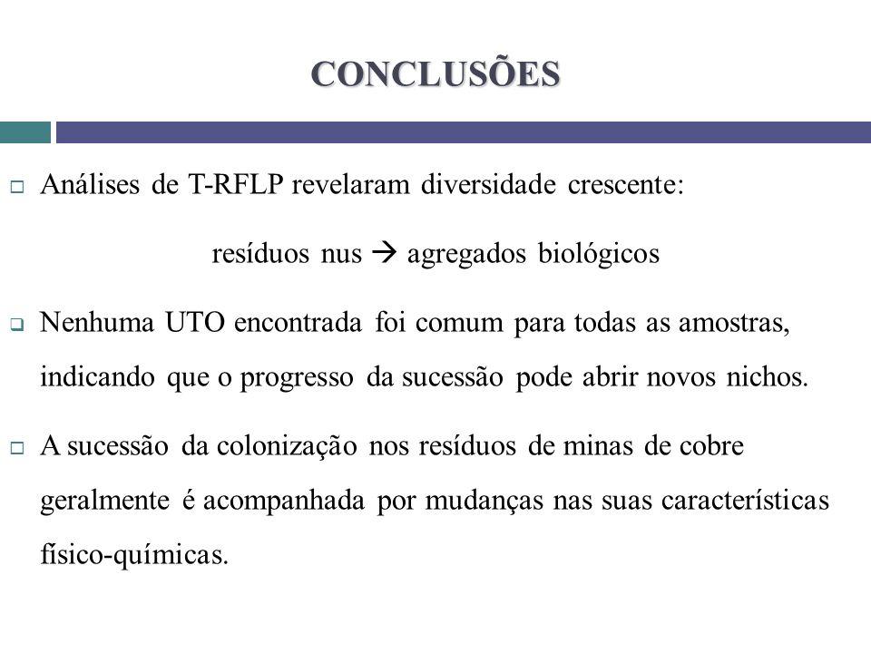 CONCLUSÕES Análises de T-RFLP revelaram diversidade crescente: resíduos nus agregados biológicos Nenhuma UTO encontrada foi comum para todas as amostr