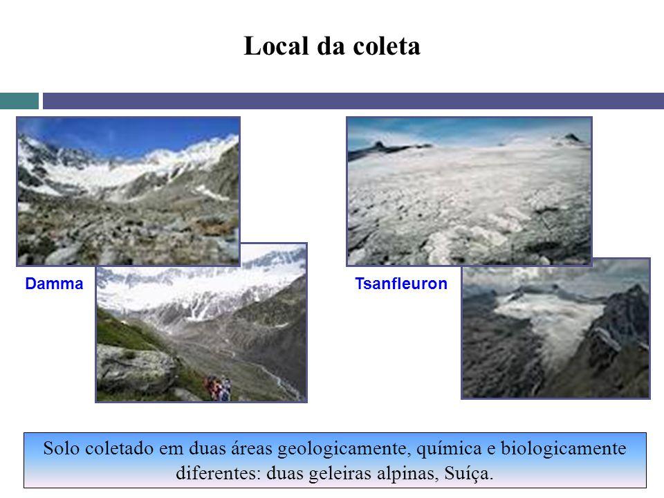 Local da coleta Solo coletado em duas áreas geologicamente, química e biologicamente diferentes: duas geleiras alpinas, Suíça. DammaTsanfleuron