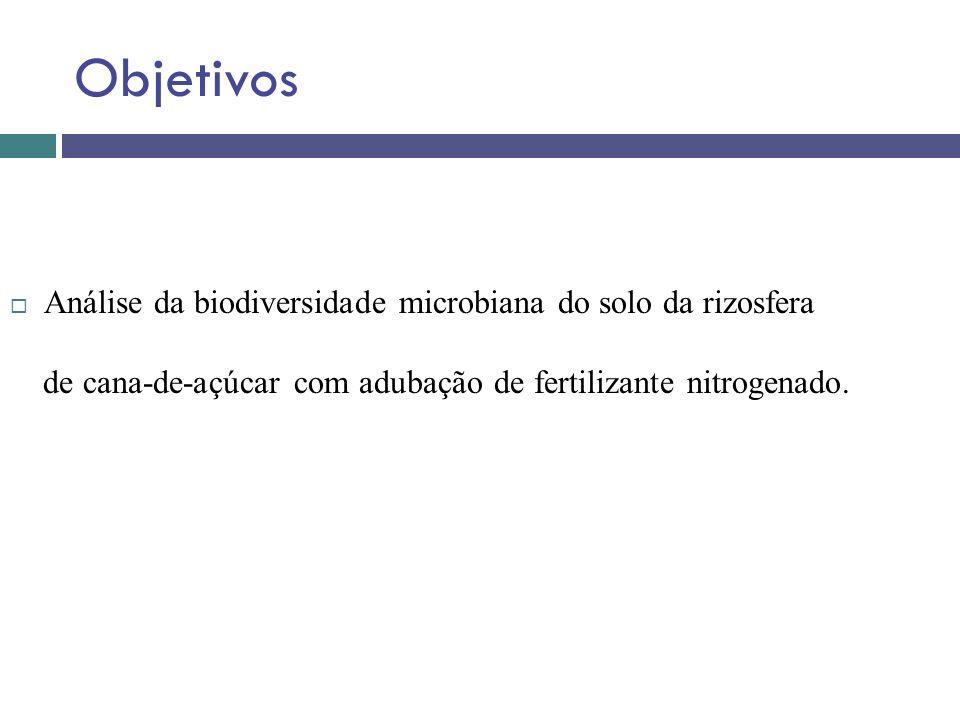 Objetivos Análise da biodiversidade microbiana do solo da rizosfera de cana-de-açúcar com adubação de fertilizante nitrogenado.