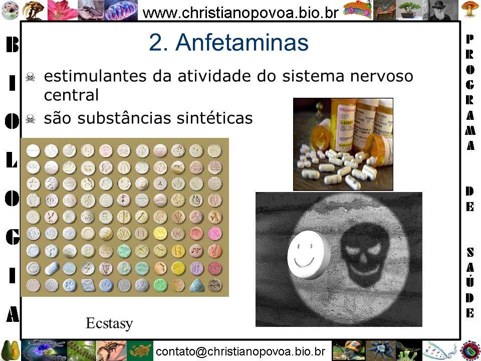 2. Anfetaminas estimulantes da atividade do sistema nervoso central são substâncias sintéticas Ecstasy