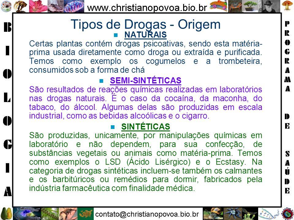 Tipos de Drogas - Origem NATURAIS Certas plantas contém drogas psicoativas, sendo esta matéria- prima usada diretamente como droga ou extraída e purif