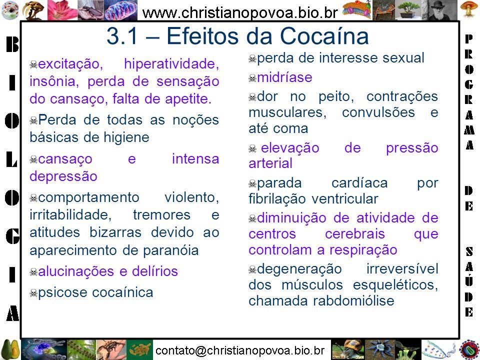 3.1 – Efeitos da Cocaína excitação, hiperatividade, insônia, perda de sensação do cansaço, falta de apetite. Perda de todas as noções básicas de higie