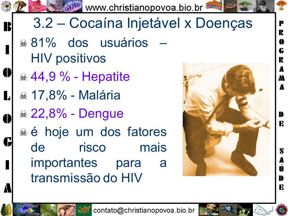 3.2 – Cocaína Injetável x Doenças 81% dos usuários – HIV positivos 44,9 % - Hepatite 17,8% - Malária 22,8% - Dengue é hoje um dos fatores de risco mai